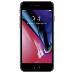 "iPhone 8 - 256 Go Gris Sidéral - ""RelifeMobile"" Grade A"